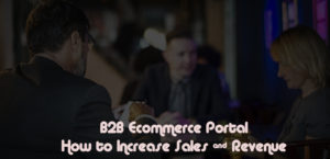 B2B Ecommerce Portal Development – How to Increase Revenue